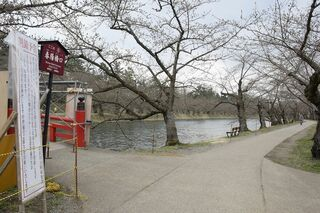 弘前公園、西堀左岸も含め全面閉鎖へ