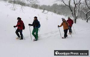 新雪を踏みしめる音を楽しみながら、スノーシューで雪原を散策するツアー