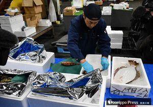 香港の創作鉄板料理店に出荷する鮮魚を箱詰めする弘前丸魚の社員=10日午前6時ごろ