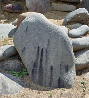 筋のように石に繁殖した黒カビ