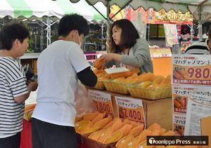 道の駅なみおかで、来場者(左)にマンゴーを販売する青森中央学院大学の学生たち