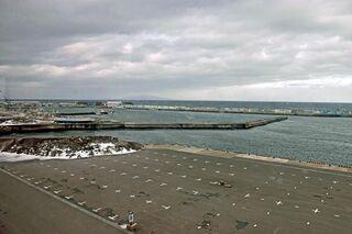佐井漁港でサーモン養殖計画 2028年度本格操業